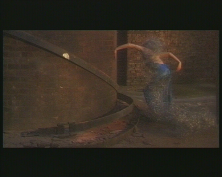 Still from Plant Life. Dir: CiCi Blumstein, UK / Germany 1997 – 2005 … The Root of the Chimney