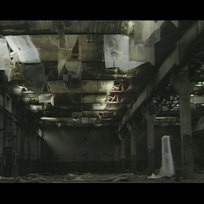 Still from Plant Life. Dir: CiCi Blumstein, UK / Germany 1997 – 2005 … The Great Oily Hall
